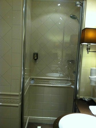 Hotel Estherea:                   deluxe room shower