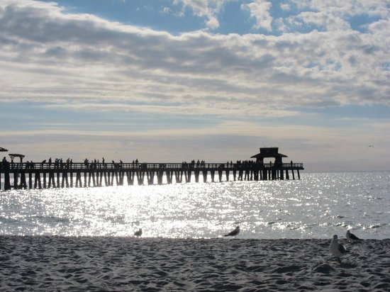 Inn on Fifth:                                     The Naples Pier just a short 10 minute walk from the hotel
