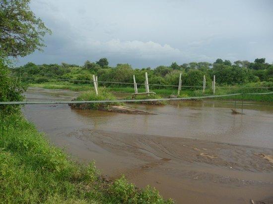 Tarangire River Camp:                   River crossing