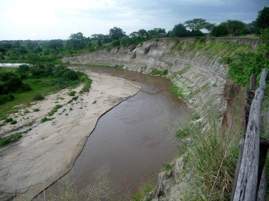 Tarangire River Camp:                   River