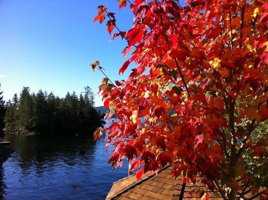 Fall at The Tuwanek Hotel and Spa