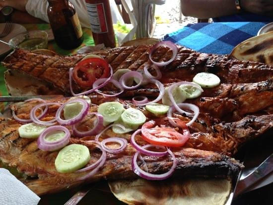 Tepic, Mexico:                   grilled fish