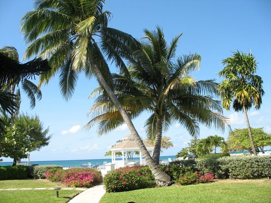 The Grandview Condos Cayman Islands:                   Grounds