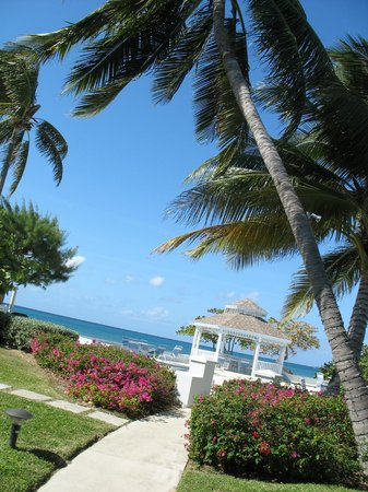 The Grandview Condos Cayman Islands:                   The lovely grounds