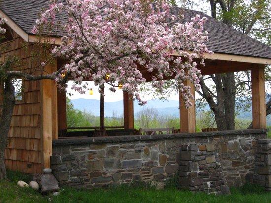 Ashokan Dreams Bed and Breakfast : Spring at Ashokan Dreams