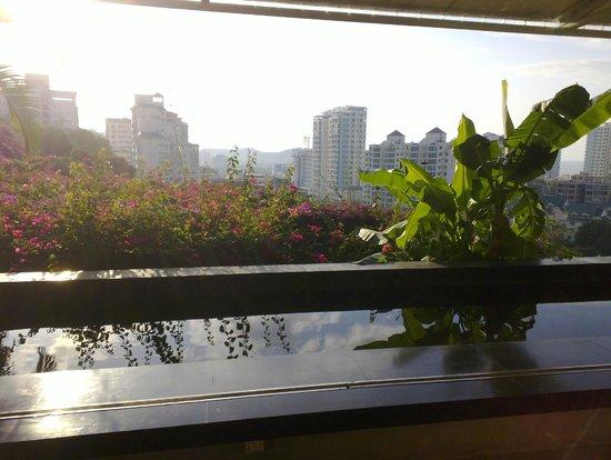 Guesthouse International Hotel:                   Lobby