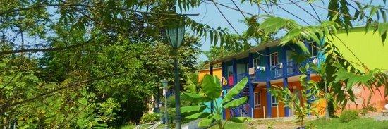 Bocas Island Lodge: Hostel