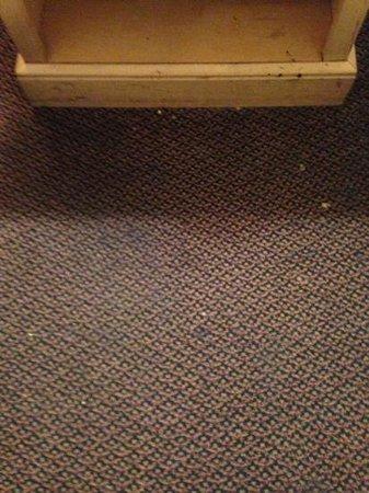 Motel 6 Nashville:                   filthy carpet