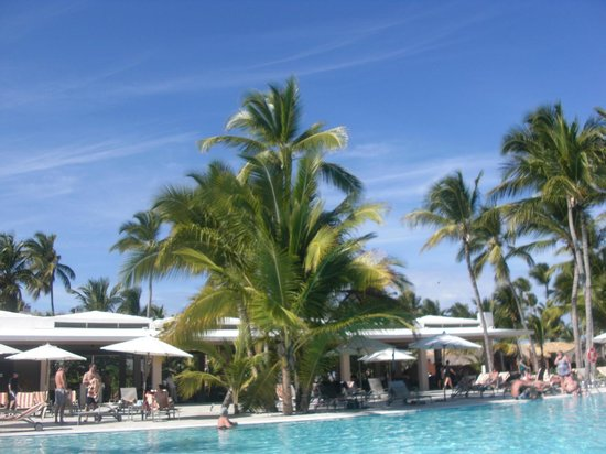 Catalonia Royal Bavaro:                   View from Pool