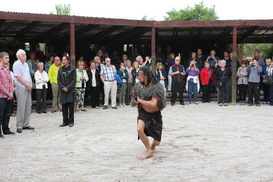 Pueblo maorí Tamaki:                   challenging the visiting Chiefs
