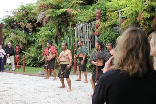 Pueblo maorí Tamaki:                   Greeting ceremony