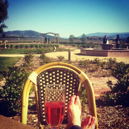 Ponte Vineyard Inn:                   Enjoying Rose Spumante on Resort Grounds