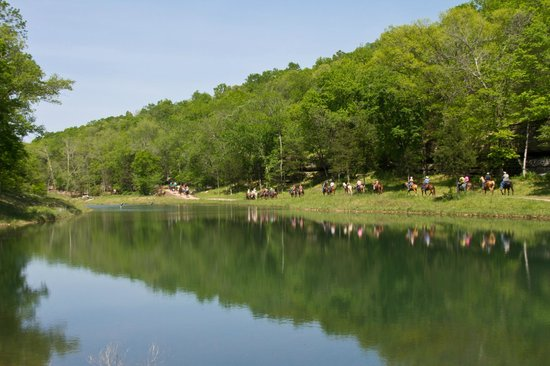 Rush Springs Ranch: Horses by Pond