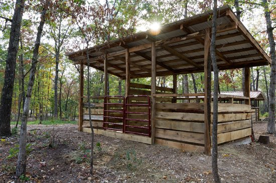 Rush Springs Ranch: One of Our Horse Stalls