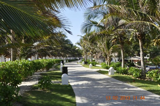 El Dorado Casitas Royale, by Karisma:                   Many walking paths