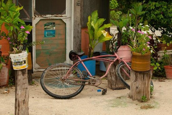 CasaSandra Boutique Hotel: Holbox
