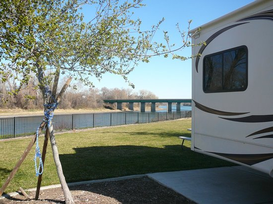 Durango RV Resort :                   Overlooking Sacramento River North end of park