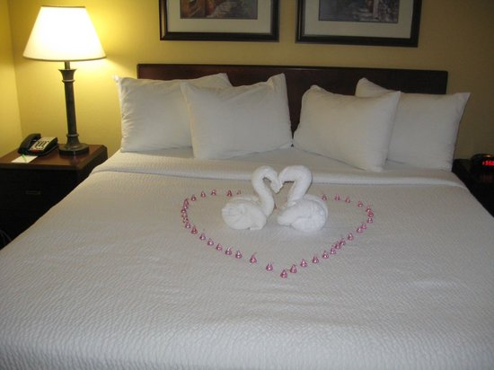SpringHill Suites Charleston Downtown/Riverview:                   Valentine's Weekend 2013