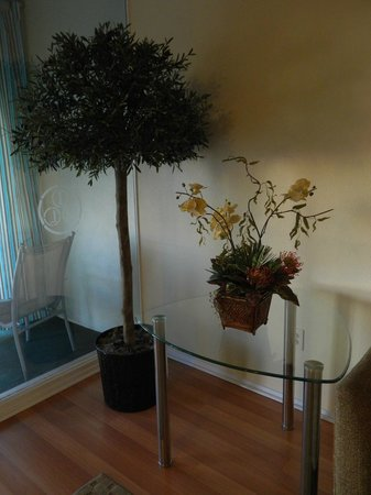 International Hotel & Suites:                   Plants and lovely furniture
