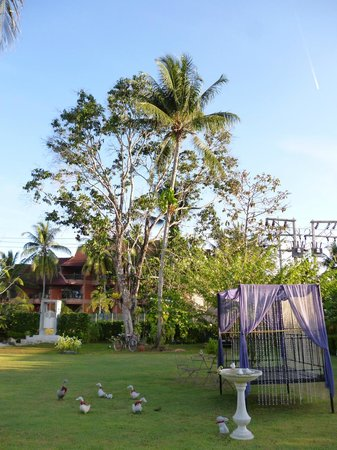 Perennial Resort:                   ガーデン