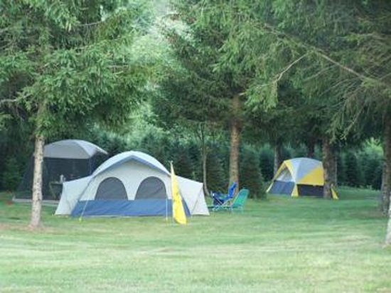 Raccoon Holler Campground Photo
