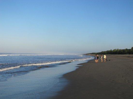 Barcelo Montelimar:                                     Les longues plages..