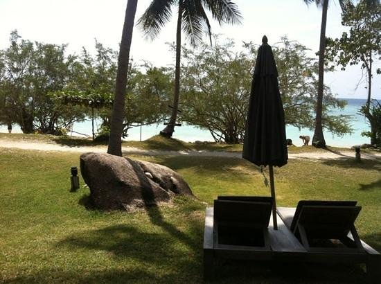 Haadtien Beach Resort :                   castaway villa view to the beach