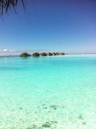 Gili Lankanfushi:                   jetty 1