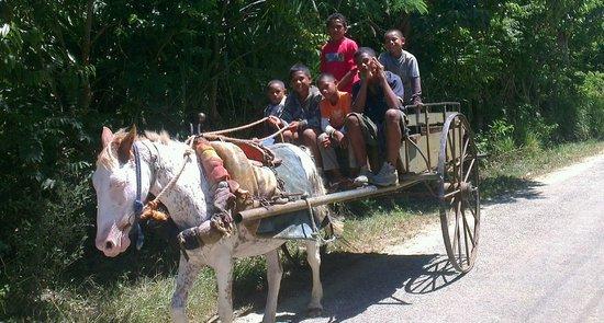 Matafonua Lodge:                                     Some of the locals