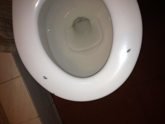 Hotel Iberia:                   Need to replace toilet seat.