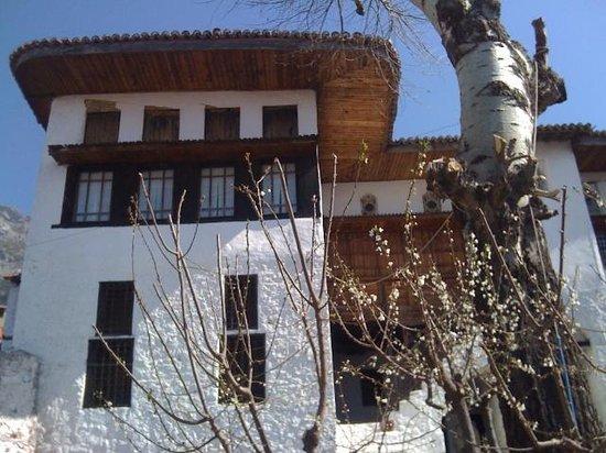Tirana's Guesthouse - Albaniatrip