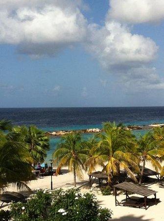 Lions Dive & Beach Resort Curacao:                   vista desde la habitación