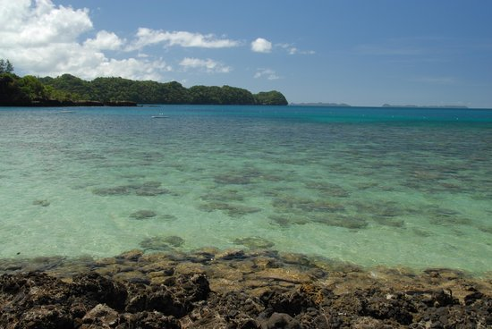 Palau Pacific Resort:                   Clear water