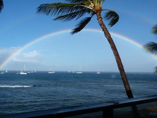 Makai Inn:                   Rainbow