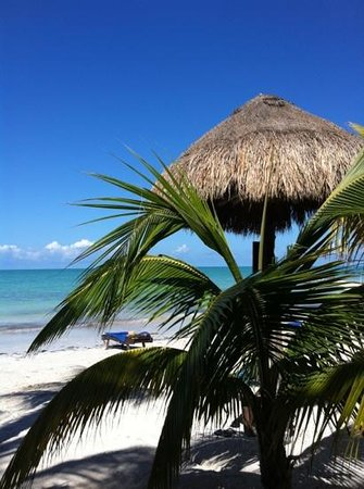 Beachfront La Palapa Hotel Adult Oriented:                   Sol, arena y mar