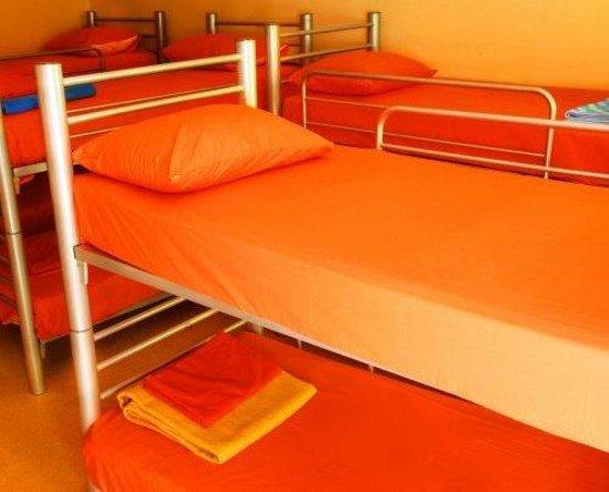 Taksim Sopha Hostel : Dorm room