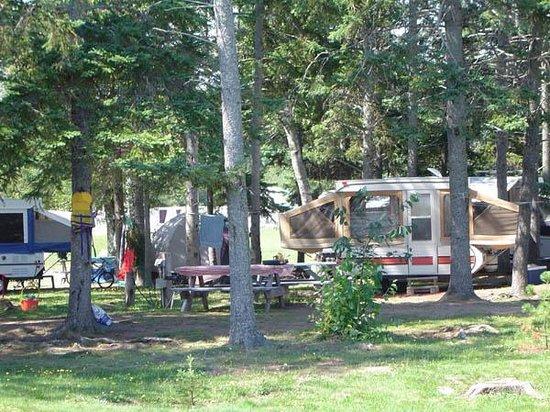 Birchwood Campground & Cabins Photo
