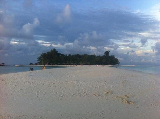 VOI Maayafushi Resort:                   die Insel