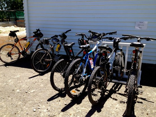 Hauraki Rail Trail - Day Rides:                   free parking Depot Garden