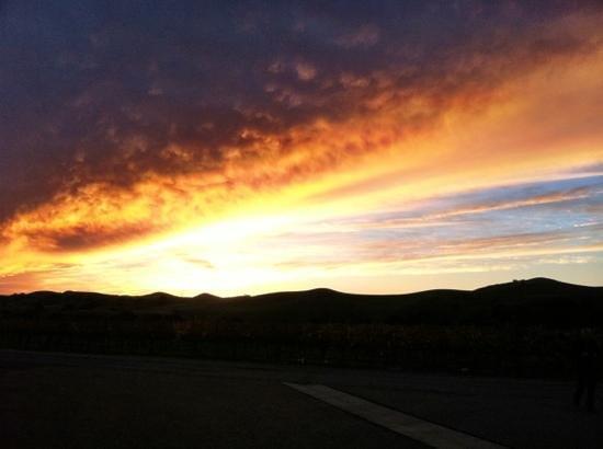 Firestone Vineyard:                   A gorgeous sunset is always a guarantee