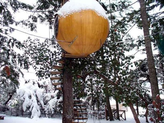 Free Spirit Spheres: Eve in the snow