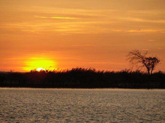 Kumarakom Lake Resort:                   View from houseboat at sunset