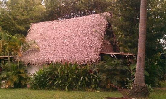 Yelapa Oasis:                   Paradise!!!