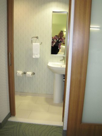 SpringHill Suites Houston The Woodlands:                   toilet and sink separate from shower
