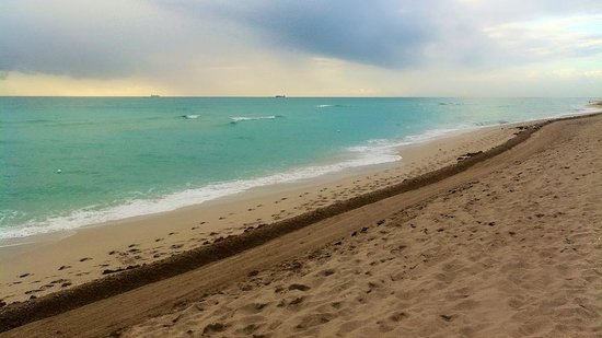 Four Points by Sheraton Miami Beach:                                     An easy walk from your room to the beach.