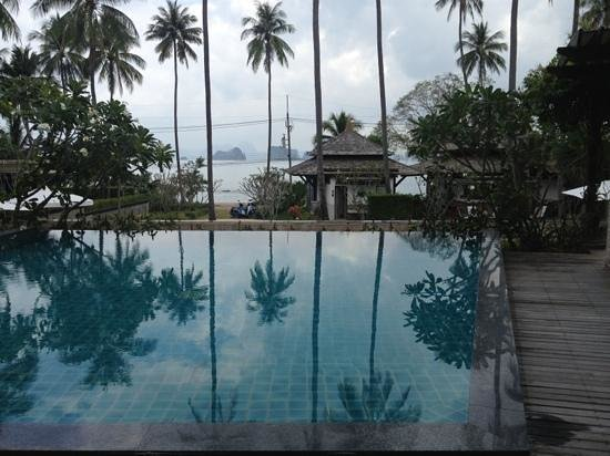 Niramaya Villa and Wellness:                   view from our private pool