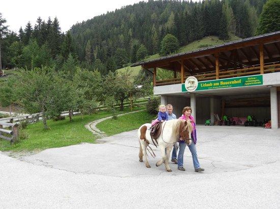 Hinterfischbach:                   Children horse riding