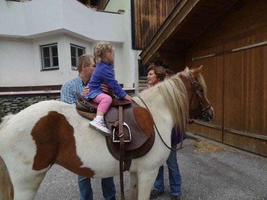 Hinterfischbach:                   Horse riding