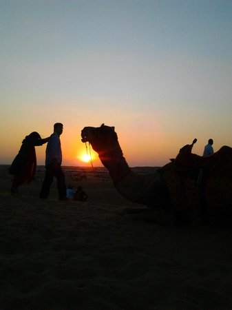 Desert Safariors Camps :                                     desert safari with sunset