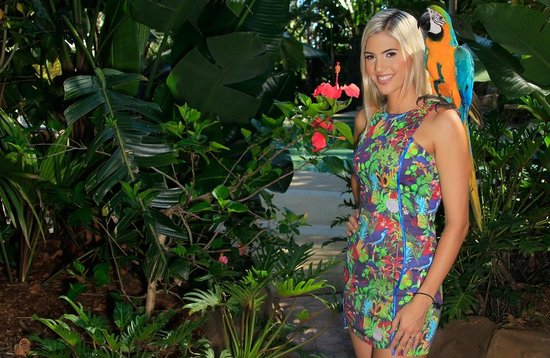أشمور بالمز هوليداي فيليدج: Ashmore Palms tropical gardens